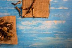 Termietpaddestoel op een houten lijst in blauw Stock Foto