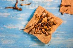 Termietpaddestoel op een houten lijst in blauw Royalty-vrije Stock Fotografie