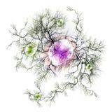 Terminaciones del nervio y nerviosas Fotografía de archivo libre de regalías