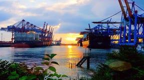 Terminal de recipiente Hamburgo Alemanha Fotos de Stock
