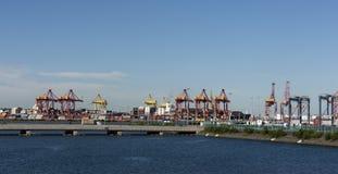 Terminal för sändningsbehållare för portbotaniklast royaltyfri fotografi
