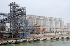 Terminale del grano Immagine Stock Libera da Diritti