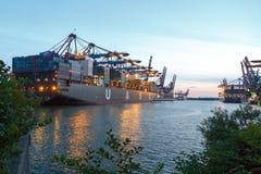 Terminale di contenitore del porto di Amburgo Fotografia Stock Libera da Diritti