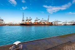 Terminale di contenitore nel porto di Rotterdam Immagini Stock