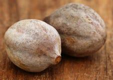 Terminalia bellericais lub lecznicze Bahera owoc fotografia stock