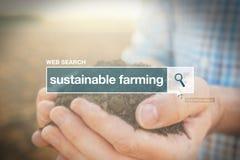 Termine d'agricoltura sostenibile del glossario della barra di ricerca di web Immagine Stock Libera da Diritti