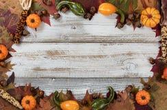 Termine la frontera del círculo del follaje del otoño con el otro decorat de la caída Foto de archivo