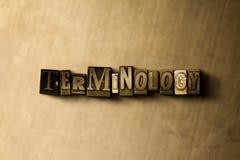 TERMINOLOGIE - close-up van grungy wijnoogst gezet woord op metaalachtergrond royalty-vrije illustratie
