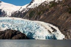 Terminus of Portage Glacier. Portage Glacier as it meets Portage Lake Royalty Free Stock Image