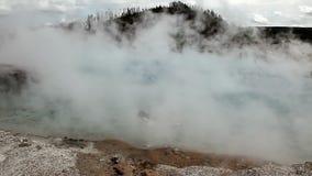 Termisk varm tips i Yellowstone stock video