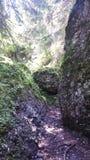 Termisk vattenfall Royaltyfri Bild
