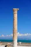 Termiska bad av Antonin på Carthage arkivfoto