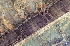 Termit äter det wood golvet Arkivfoto