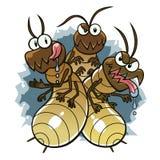 termitas Fotos de archivo