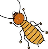 Termite. Insect isolated on white drawn in toddler art style Royalty Free Stock Photos