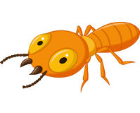 Termite cartoon Stock Image