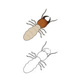 Termite. This is termite color and outline Royalty Free Stock Photography