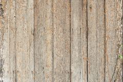 Termite Damage. Texture and background royalty free stock image