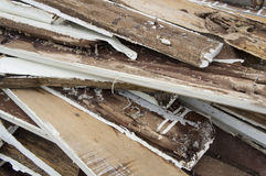 Termite damage rotten wood eat nest destroy concept Royalty Free Stock Image