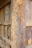 Termite damage wooden wall. Termite damage home wooden wall background stock photos