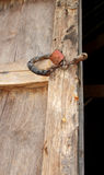 Termite damage wooden wall and master key. Termite damage home wooden wall and master key stock images