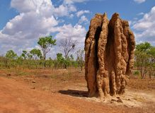 Termite hill, mound Stock Images