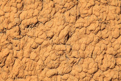 Termite hill texture Stock Image