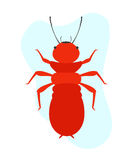 Termite Insect. Comic Creepy Termite Insect Vector Illustration Stock Photos