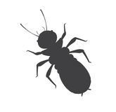 Termite Insect Vector Silhouette. Illustration Royalty Free Stock Photography