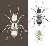 Termite. Isolated objects. Vector illustration (EPS 10 Royalty Free Stock Image