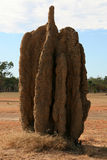 Termite Mound - Kakadu National Park, Australia Stock Photo