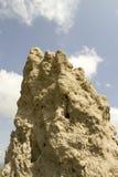Termite mound, Tanzania, Africa Royalty Free Stock Photos