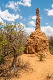 Termite mound Stock Photo