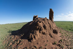 Termite Mound. Tremendous termite mound in the plains of South Africa Stock Images