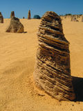 Termite mounds. Australia. Royalty Free Stock Photo