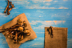 Termite Mushroom on a wooden table in blue. Royalty Free Stock Photo
