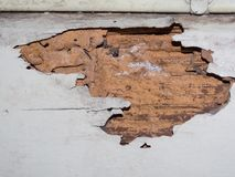 Termite nest pattern on old brown wooden wall. A Termite nest pattern can be considered as being composed of two parts, the inanimate and the animate on old royalty free stock images