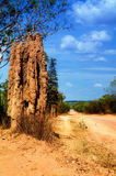 Termite tower Royalty Free Stock Image