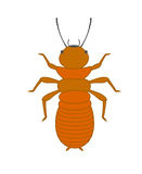 Termite Vector Insect. Comic Creepy Termite Vector Insect Stock Photos