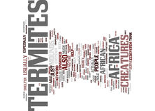 Termites In Africa Text Background  Word Cloud Concept Royalty Free Stock Image