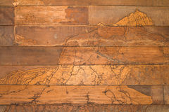 Termites en bois de mur de texture Photos libres de droits