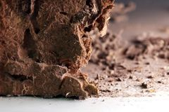 Termitu gniazdeczko, tło gniazdowy termit, uszkadzał drewnianego jedzącego termitu lub białej mrówki selekcyjną ostrością zdjęcie stock