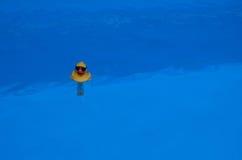 Termómetro amarillo del pato en el agua azul Imagen de archivo