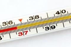 Termometer för traditionell medicin med normal temperatur 36 6 grader Royaltyfri Fotografi