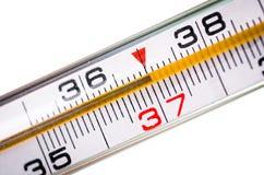 Termometer på vit Fotografering för Bildbyråer