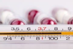Termometer and pills Stock Image