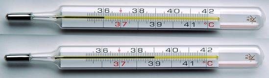 termometr pnia mózgu kliniczne Obrazy Royalty Free