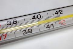 termometro Immagini Stock