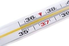 Termometro della medicina Fotografie Stock Libere da Diritti