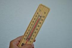 Termometro di legno di Mercury Immagine Stock Libera da Diritti